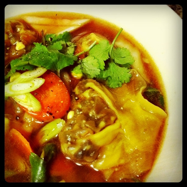 Vegetarian Wonton Soup | Veggie Mama