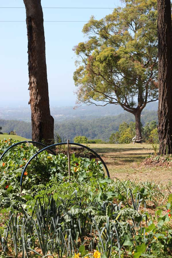 Gwinganna Lifestyle Retreat | Veggie Mama