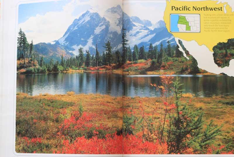 America the Majestic Pictorial Cookbook | Veggie Mama